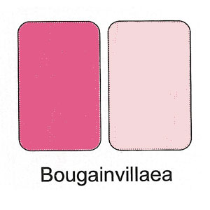Duo Cream Powder Compact - Bougainvillea